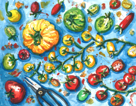 blue-tomatoes